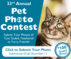 2018 Pet Photo Contest Submit Dig Reg