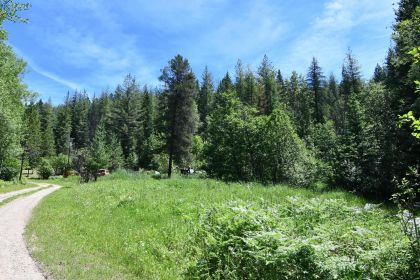 PRICE JUST REDUCED! SHOSHONE COUNTY: PRIVATE 2.22 ACRES